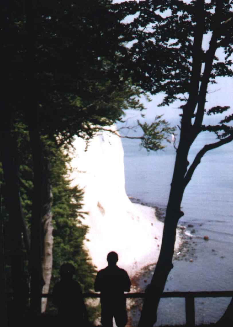 Stubbenkammer - Kreidek�ste des Nationalpark Jasmund
